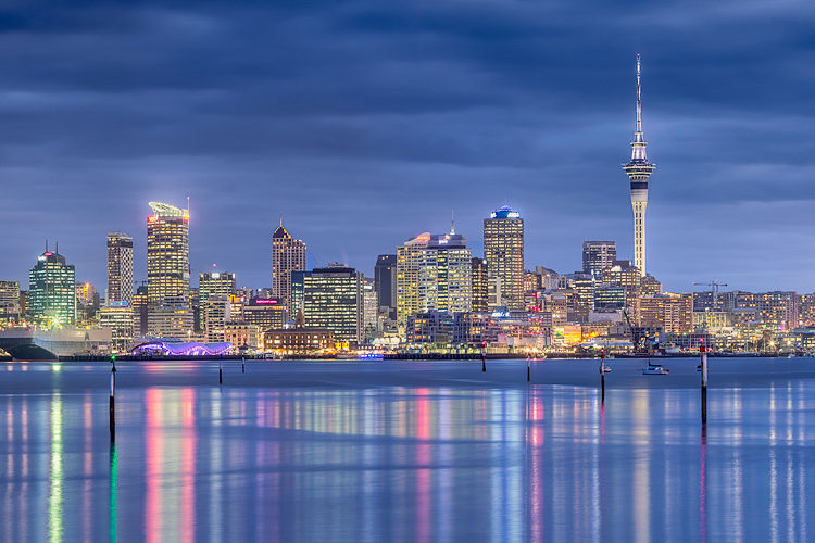 Why study in new zealand life license consultancy